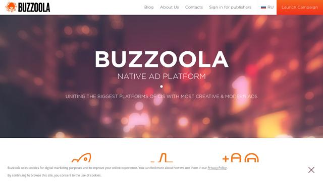 Buzzoola API koppeling