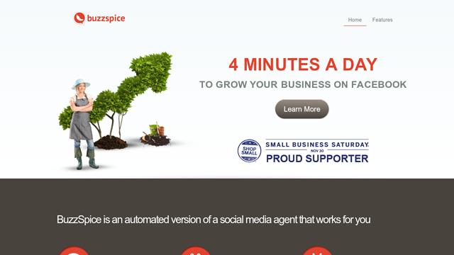 BuzzSpice API koppeling