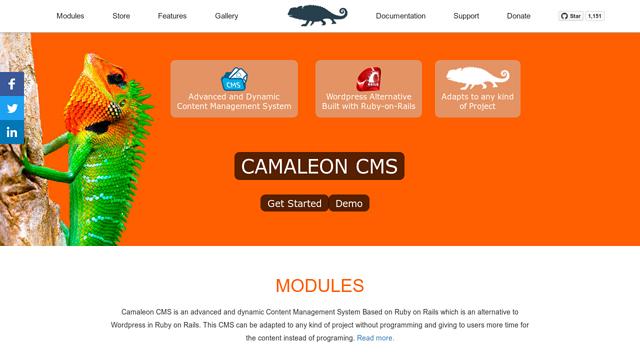 Camaleon-CMS API koppeling