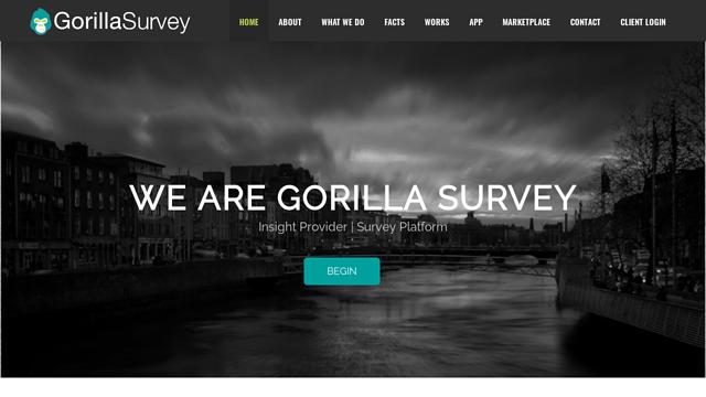 GorillaSurvey API koppeling