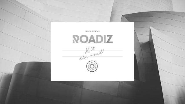Roadiz API koppeling
