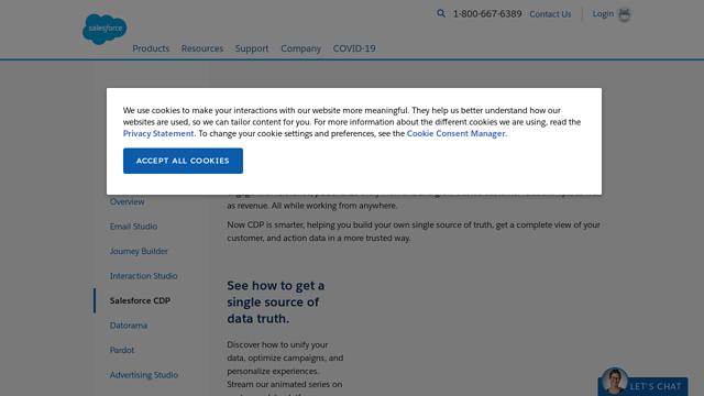 Salesforce-DMP API koppeling