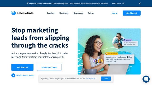 Saleswhale API koppeling