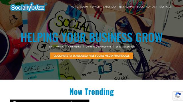 Sociallybuzz API koppeling